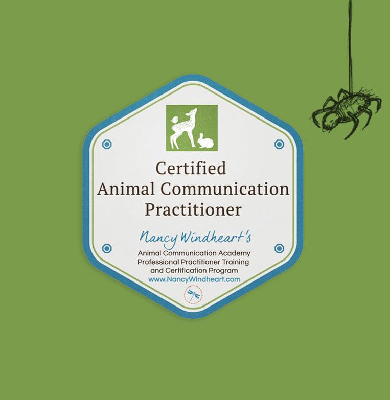 Katy Sainty Animal Communicator